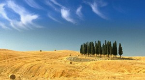 Incredible nature - Tuscany Individual car tours