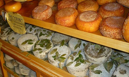 cheese tuscany - car tours rome