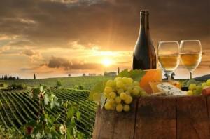 chianti vino