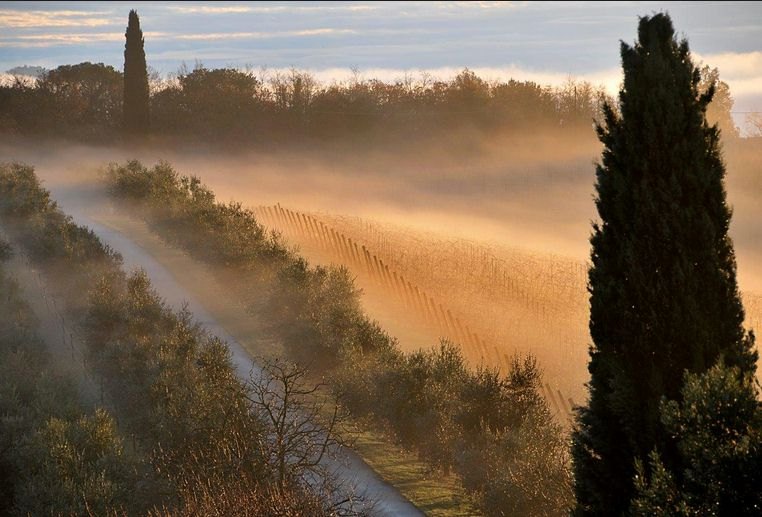 Maremma Tuscany car excursion
