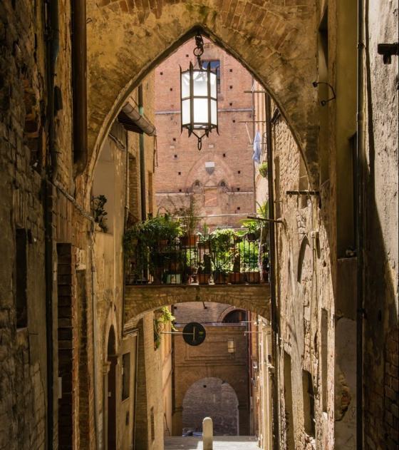Siena luxury privat tour