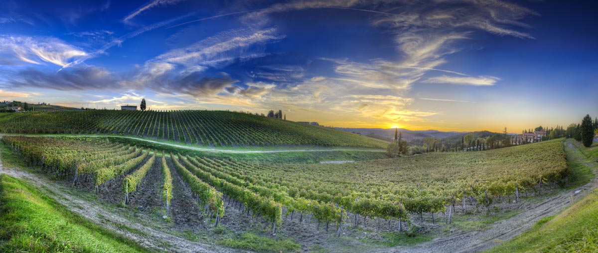 Tuscany with driver guide