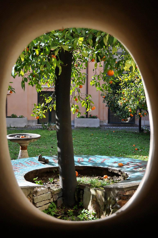 Orange tree in Santa Sabina Basilica - Rome