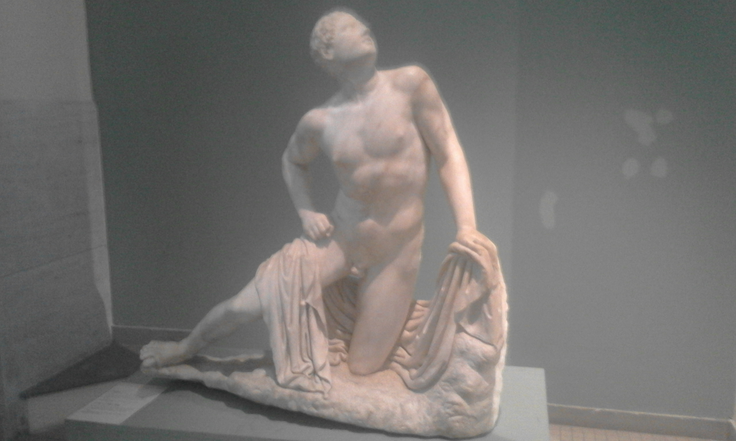 Wounded Niobid - Centrale Montemartini