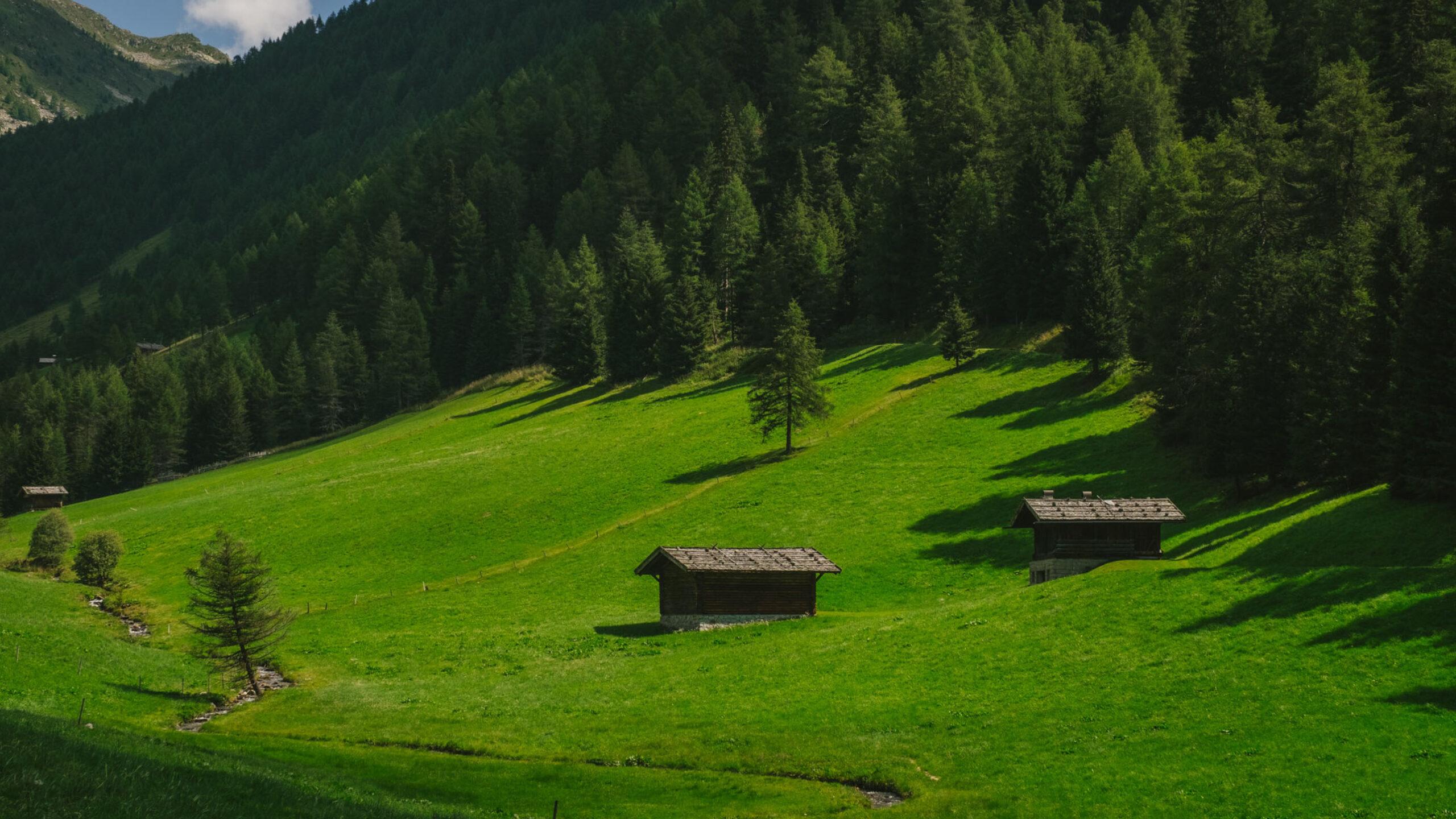 Car tours of Trentino