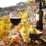 Tour des Vins еn Italie